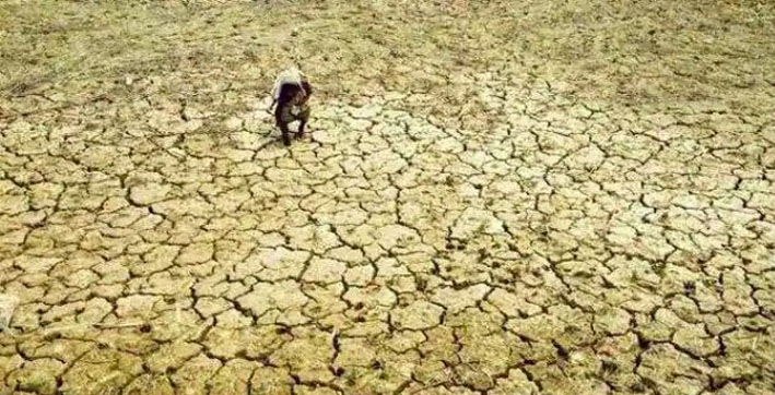 Assam, West Bengal among 8 states highly vulnerable to climate change: Report
