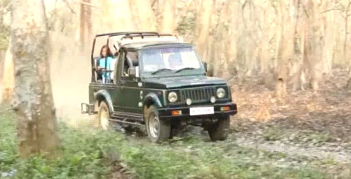 kaziranga to open from tomorrow only jeep safari to be allowed