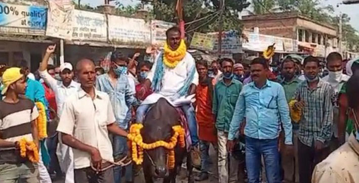 this bihar candidate comes to file nomination on a buffalo
