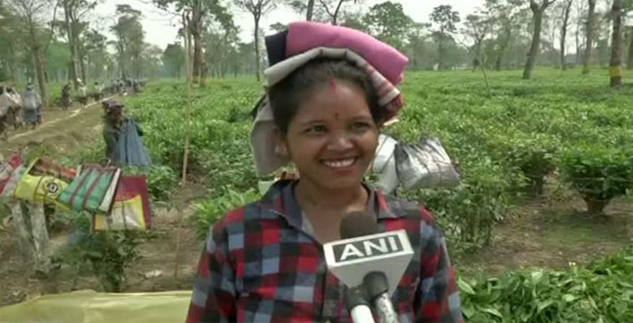 bjp's-unfulfilled-promises-to-tea-garden-workers-may-hamper-its-prospects-in-upp