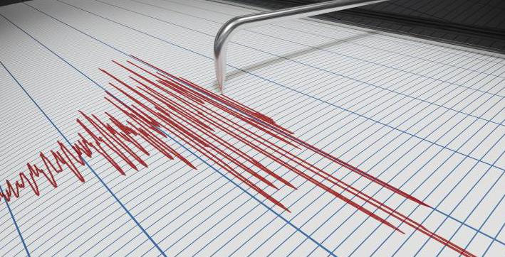 44 magnitude earthquake hits near mokokchung in nagaland