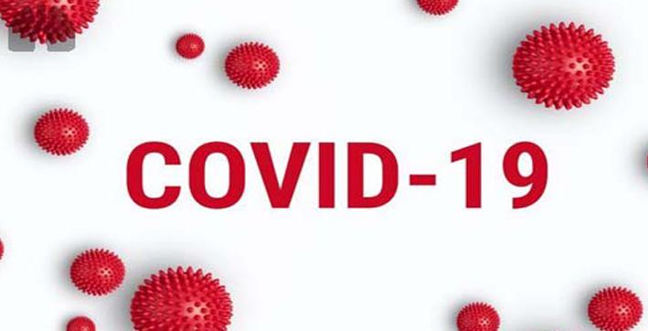 global covid-19 tally crosses 42 million mark