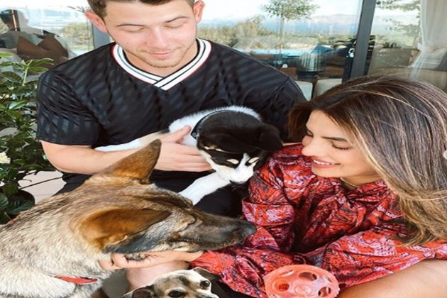priyanka chopra welcomes new furry friend shares family portrait
