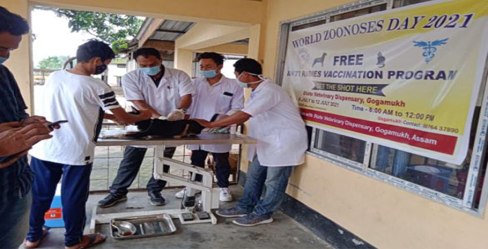 world-zoonoses-day-biggest-free-anti-rabies-vaccination-drive-in-assam